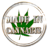 Weed Marijuana Cannabis Dispensary Near Me Edmonton